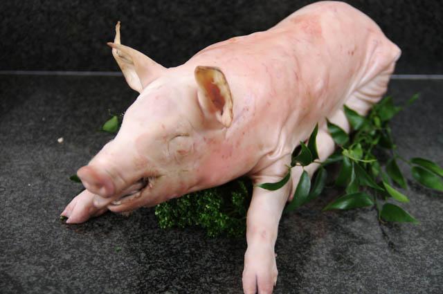Cochon de lait la grande boucherie d 39 asni res - Papa cochon a la piscine ...